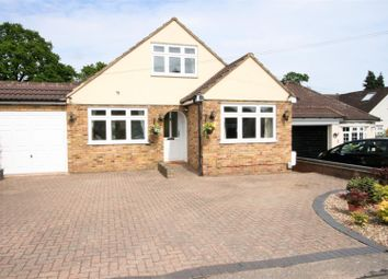 Thumbnail 4 bed bungalow for sale in The Crescent, Bricket Wood, St. Albans