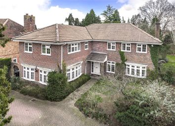 Thumbnail 6 bed detached house for sale in Pyrford, Surrey