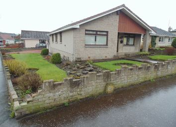 Thumbnail 3 bed bungalow for sale in Cambusnethan Street, Wishaw