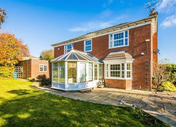 Thumbnail 4 bed detached house to rent in Holkham Rise, Whirlowdale Park, Sheffield