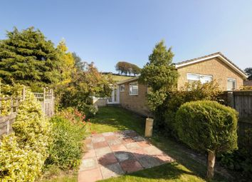 Thumbnail 3 bed bungalow to rent in Yarn Barton, Broadwindsor, Beaminster, Dorset