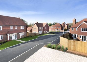 Thumbnail 4 bed semi-detached house for sale in Oakwood Way, Wadhurst, East Sussex