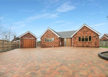 Thumbnail 3 bed detached bungalow for sale in Jersey Gardens, Wickford