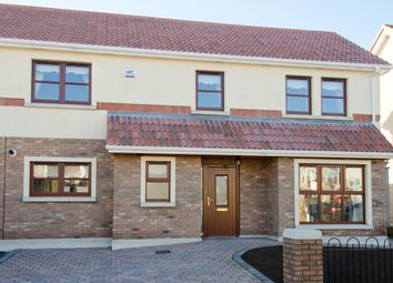 Thumbnail 3 bed detached house for sale in 40 Ryebridge Green, The Ryebridge, Kilcock, Co. Kildare