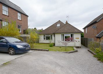 Thumbnail 4 bed detached bungalow for sale in Beacon Hill Road, Hindhead