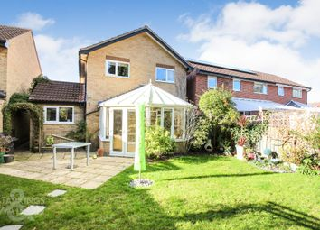 Thumbnail 4 bed detached house for sale in Otter Drive, Mulbarton, Norwich