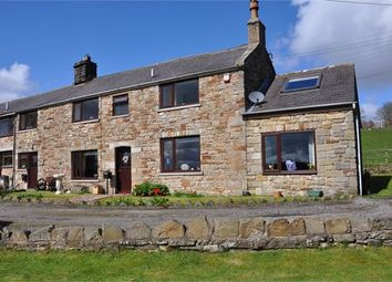 Thumbnail 3 bed semi-detached house for sale in Crofton Hall, Comb Hill, Haltwhistle, Northumberland.