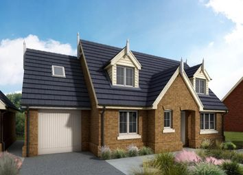 Thumbnail 3 bed detached house for sale in Hardwick Court, Holme, Peterborough