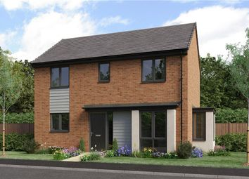 """Thumbnail 3 bed detached house for sale in """"The Darwin Da"""" at Bristlecone, Sunderland"""
