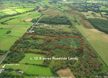 Thumbnail Property for sale in Ballymackeogh, Newport, Tipperary