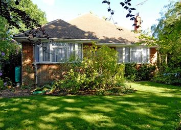 Thumbnail 3 bed bungalow to rent in Finchampstead Road, Wokingham