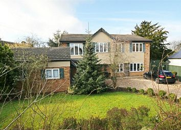 Thumbnail 5 bed detached house for sale in Little Laver Road, Matching Green, Harlow, Essex