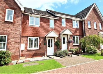 Thumbnail 2 bed terraced house for sale in Cambrian Close, Paignton