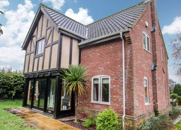 Thumbnail Detached house to rent in Martham Road, Rollesby, Great Yarmouth