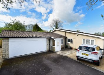 Thumbnail 4 bed detached bungalow for sale in Dursley Road, Heywood, Westbury