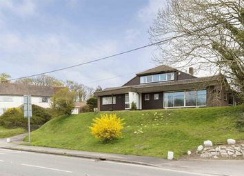 Thumbnail 4 bedroom detached house for sale in Salisbury Road, Winkton, Christchurch, Dorset