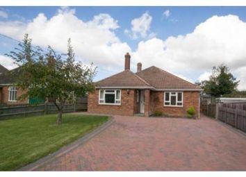 Thumbnail 3 bed detached bungalow to rent in Main Street, Peasmarsh, Rye