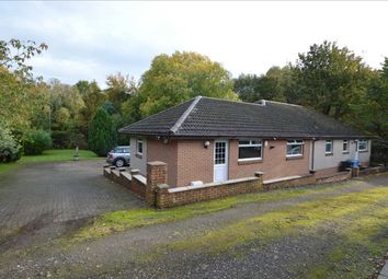 Thumbnail 4 bed bungalow for sale in Woodfoot Road, Hamilton