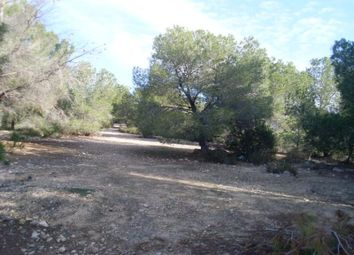 Thumbnail Land for sale in 03193 San Miguel De Salinas, Alicante, Spain