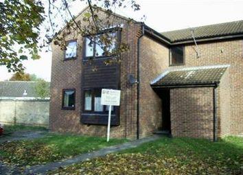 Thumbnail Studio to rent in Weston Way, Newmarket