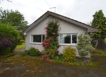 Thumbnail 2 bed bungalow for sale in South Lane, Norham, Berwick Upon Tweed, Northumberland
