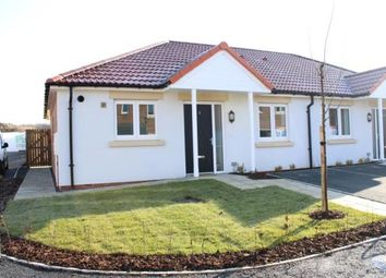 Thumbnail 2 bed bungalow for sale in The Limes, Coxhoe, Durham