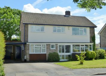 Thumbnail 4 bed detached house to rent in Firwood Road, Melton Mowbray