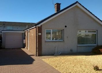 Thumbnail 2 bed detached bungalow to rent in 8 Macdiarmid Road, Heathhall, Dumfries