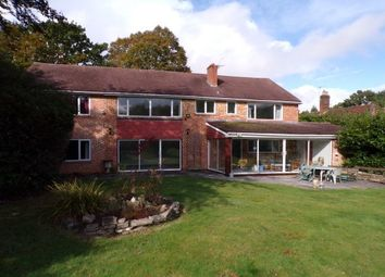 Thumbnail 5 bed property to rent in Beechwood Road, Southampton