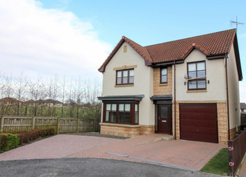 Thumbnail 4 bed detached house to rent in Cauldhame Street, Falkirk FK2,