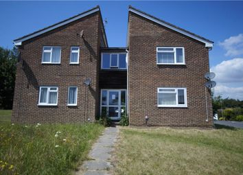 Thumbnail Studio for sale in Reedmace Close, Waterlooville, Hampshire