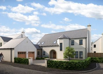 Thumbnail 5 bedroom detached house for sale in Plot 36, Larbert, Falkirk