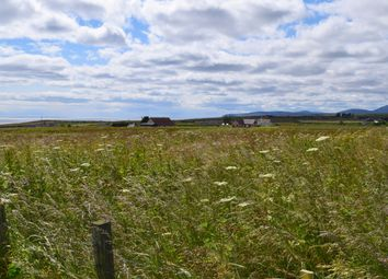 Thumbnail Land for sale in Croft At Mains Of Forse, Lybster