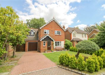 Thumbnail 4 bed detached house for sale in Mallards Way, Lightwater, Surrey