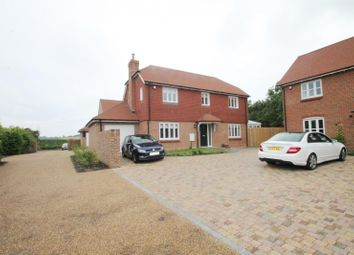 Thumbnail 4 bed detached house to rent in Northbrook Cottages, Titnore Lane, Worthing