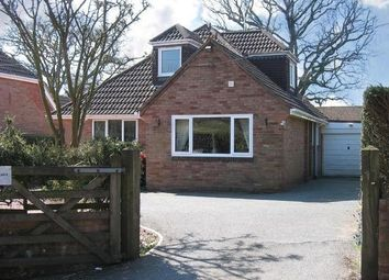 Thumbnail 3 bed bungalow to rent in Town Lane, Woodbury, Exeter
