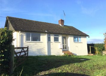 Thumbnail 3 bed detached bungalow to rent in Melcombe Park Farm, Ansty, Dorchester