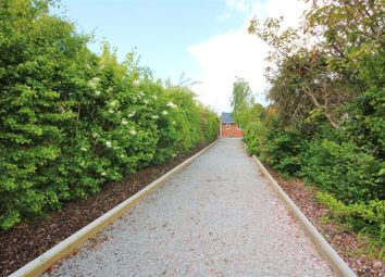 Thumbnail 3 bed detached bungalow for sale in Willow Avenue, Kirby Cross, Frinton-On-Sea