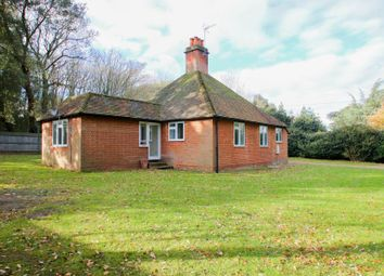 Thumbnail 3 bed detached house to rent in Guileshill Lane, Ockham, Woking