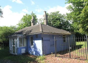 Thumbnail 2 bed detached bungalow to rent in Halstead Road, Colchester