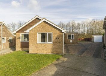 Thumbnail 3 bed detached bungalow for sale in Hollythorpe Close, Hasland, Chesterfield