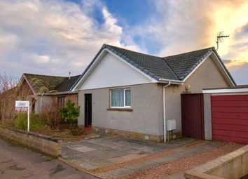 Thumbnail 2 bed semi-detached house to rent in 11 Hospitalfield Road, Arbroath, Angus, 2Lp