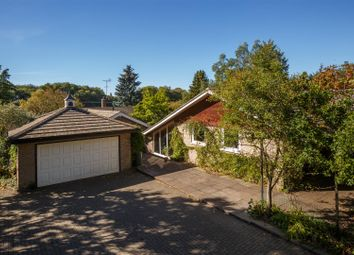 Thumbnail 4 bed detached bungalow for sale in Chimney Mills, West Stow, Bury St. Edmunds