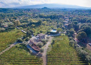 Thumbnail Farm for sale in Castiglione di Sicilia, Sicily, Italy