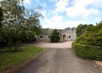 Thumbnail 5 bed bungalow for sale in Dura Den Road, Pitscottie, Cupar