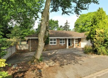 Thumbnail 4 bed detached bungalow for sale in Dashwood Close, West Byfleet