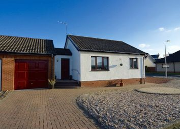 Thumbnail 1 bed detached bungalow for sale in Abbots Way, Doonfoot, Ayr