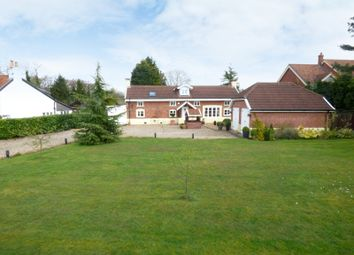 Thumbnail 5 bedroom detached house for sale in Ferry Road, Surlingham, Norwich