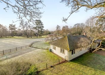 Thumbnail 4 bed bungalow for sale in Fifield Lane, Frensham, Farnham
