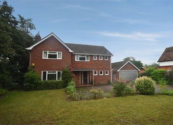 Thumbnail 4 bed detached house for sale in Watton Road, Larling, Norwich, Norfolk